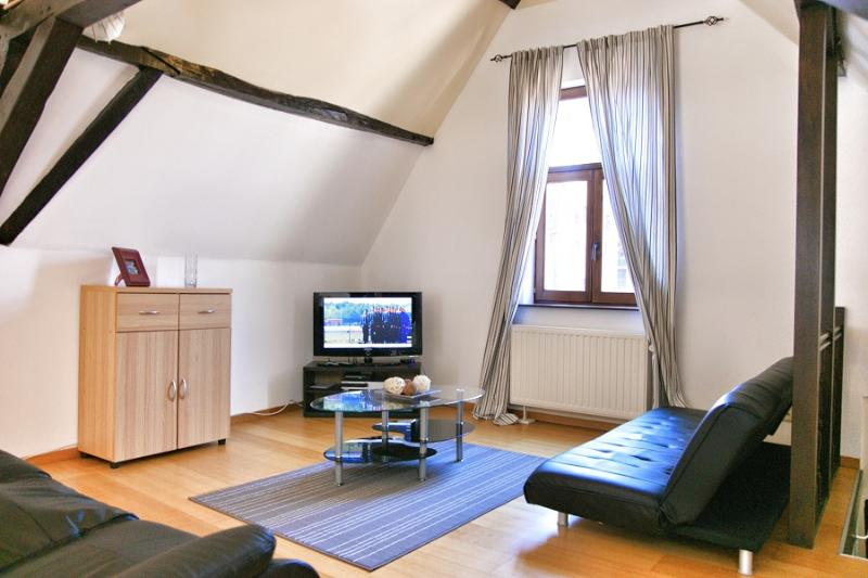 Agora 5 - Image 1 - Oud-Heverlee - rentals