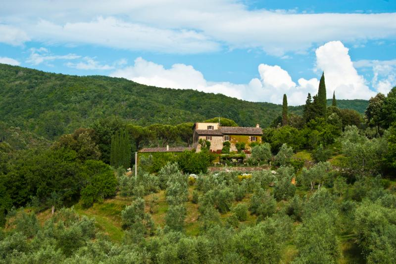 View of the villa, guest house, and olive grove from the Castello Mugnana across the valley - Le Valle Guesthouse - Under the Tuscan Sun - Strada in Chianti - rentals
