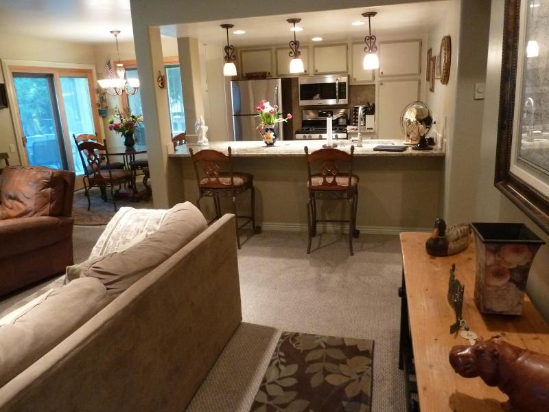 Sun Valley / Ketchum Walk to Lodge/Downtown! - Image 1 - Ketchum - rentals