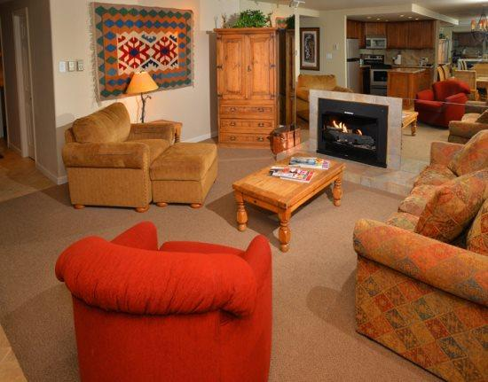 Living Room - Vantage-Point-105 - Vail - rentals