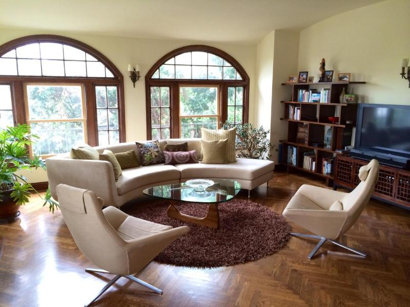 Living room - Large Lower Pac Hts Flat - San Francisco - rentals