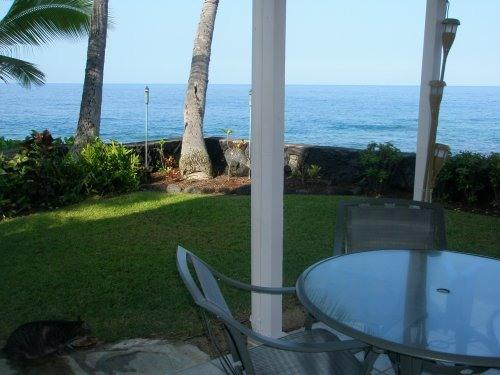 A MUST SEE !! DIRECT OCEANFRONT TOWNHOUSE! - Image 1 - Kailua-Kona - rentals