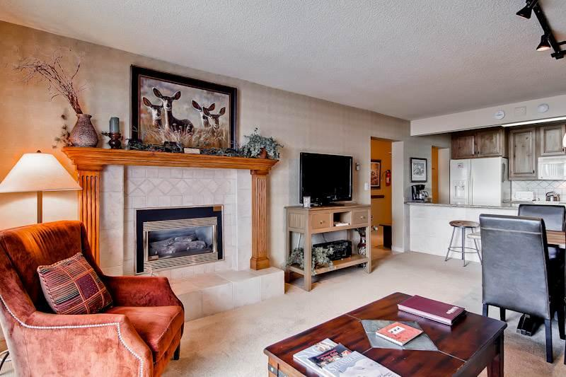 Bronze Tree B305 - Image 1 - Steamboat Springs - rentals