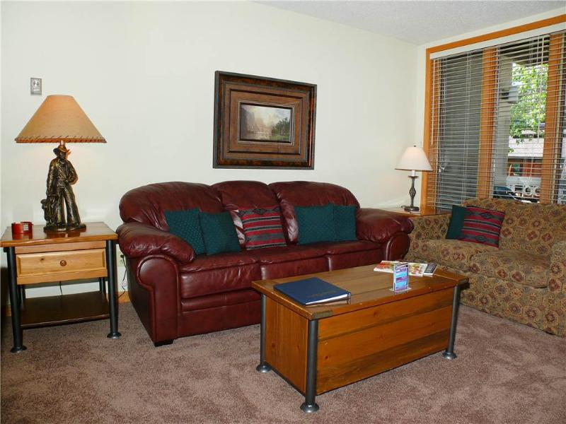 Trappeur's Lodge 1108 - Image 1 - Steamboat Springs - rentals
