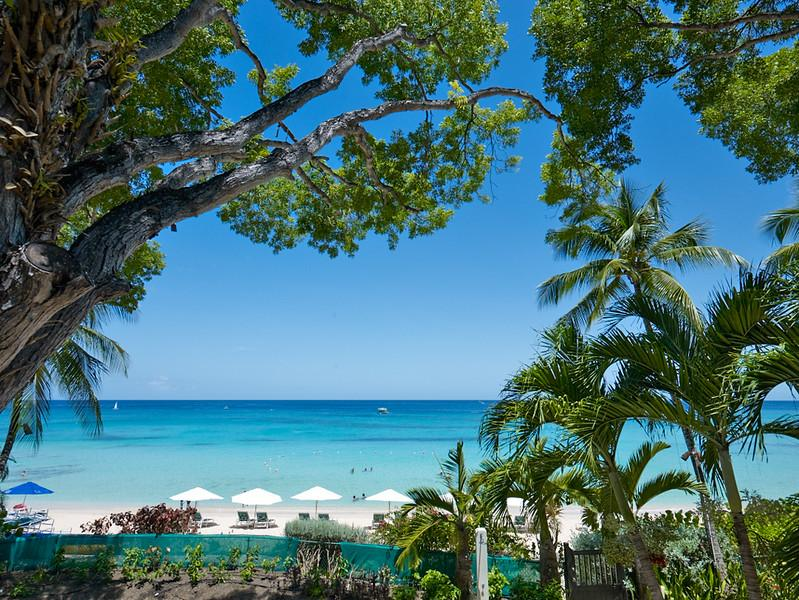 "Coral Cove 5 ""Shutters"" at Payne's Bay, Barbados - Beachfront, Jacuzzi Pool, Walk To Restaurants, Shopping And Beach Bars - Image 1 - Paynes Bay - rentals"