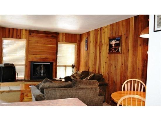 Living room - Pet friendly and perfect for a family of 4! - Brian Head - rentals