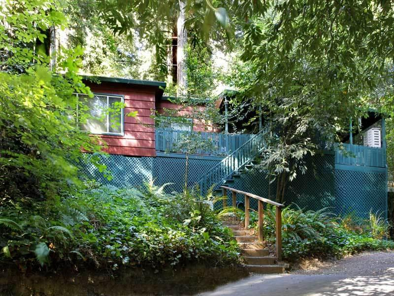 FOREST LODGE - Image 1 - Russian River - rentals