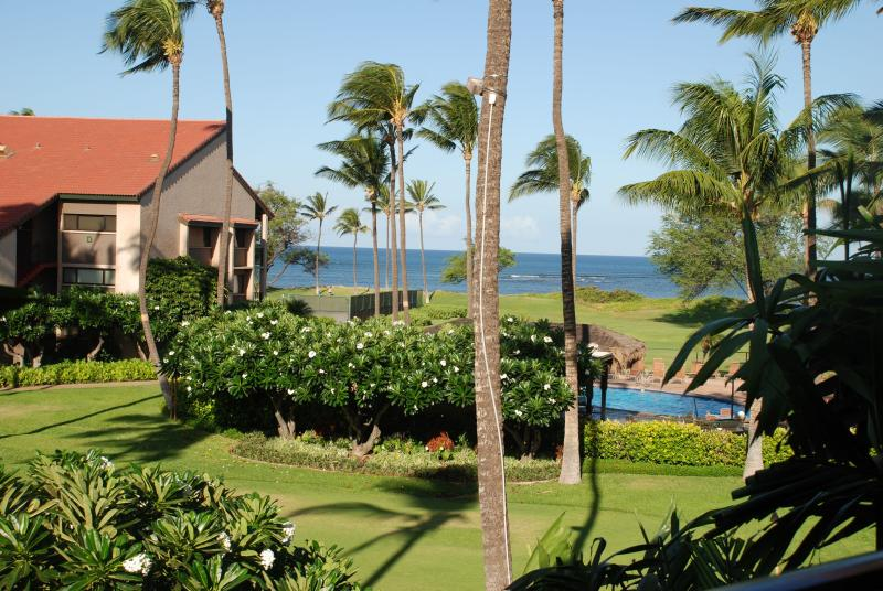 View from lanai - DEC. OPEN!!OCEANFRONT/OCEAN VIEW,FREE WIFI,PARKING - Kihei - rentals