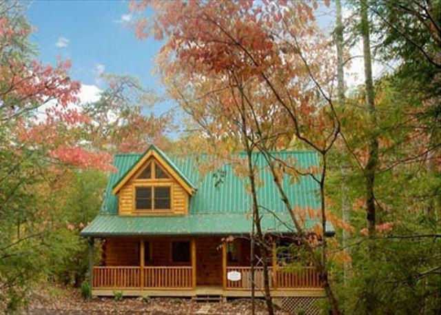 Around the Mountain a one bedroom cabin - Image 1 - Sevierville - rentals