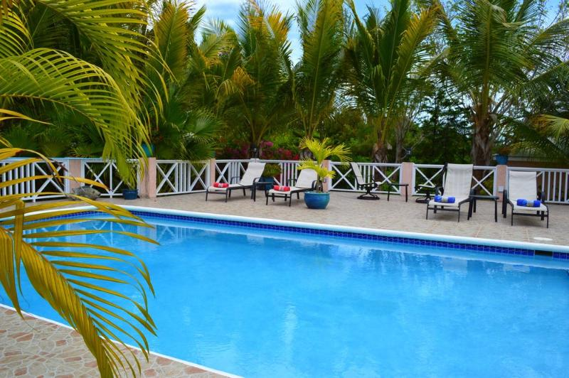 Large Private Pool - Near beach, private, secluded, bikes - Providenciales - rentals