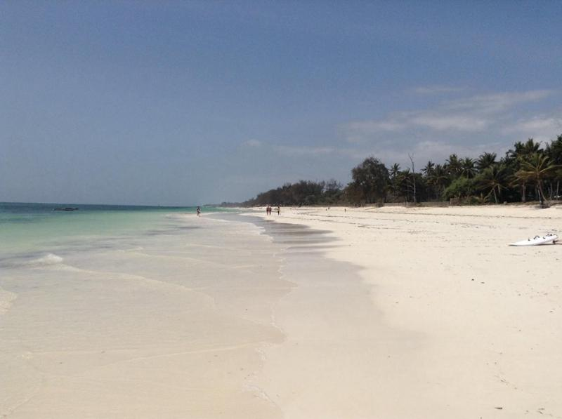 Diani Beach - Diani Beaches - Under construction - Diani - rentals