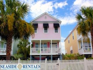 Pink Paradise - Surfside Beach vacation rentals