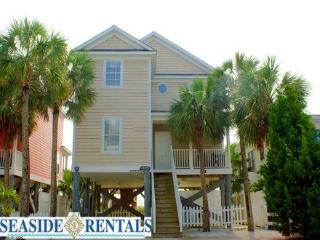 Moon Shadow - Surfside Beach vacation rentals