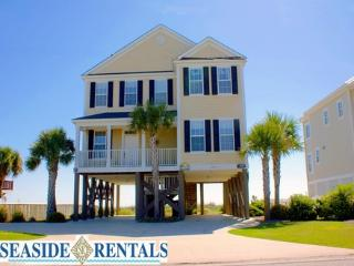 Four Seasons - Surfside Beach vacation rentals