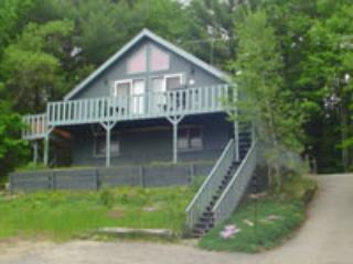 Madison Vacation Rental - Image 1 - Madison - rentals