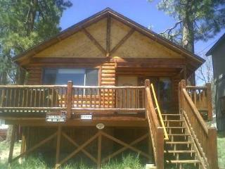 Bear Claw Bungalow #379 - Big Bear Area vacation rentals