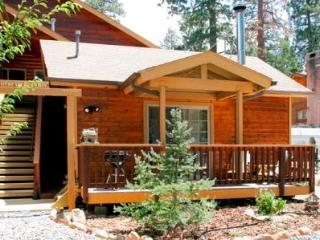 Day Dreamin (Lower studio)  #867 - Big Bear Area vacation rentals