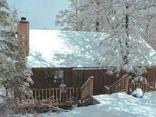 La*Sno*Ski!  #315 - Image 1 - Big Bear City - rentals