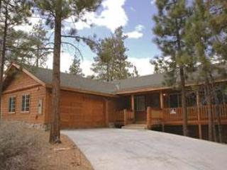 Ponderosa! #458 - Image 1 - Big Bear City - rentals