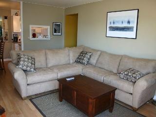 Comfortable apartment offers impressive views of downtown and Lake Union! - Seattle vacation rentals