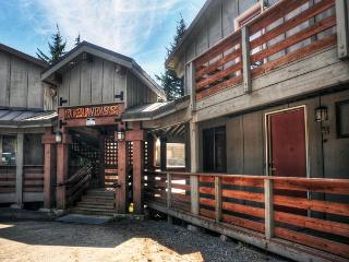 Edelweiss #5 - Government Camp, Fireplace, Dogs OK - Mount Hood vacation rentals