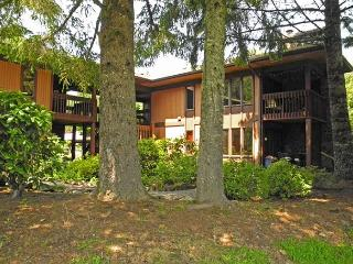 ShadowHawk #5 - Fireplace, Hot Tub, Dogs OK - Mount Hood vacation rentals