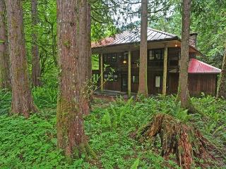 Huckleberry Wilderness Lodge - Riverfront, Hot Tub - Mount Hood vacation rentals