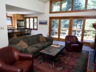 Falcon's Nest - Stowe Area vacation rentals