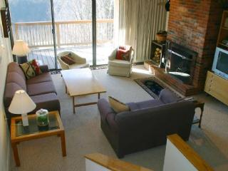 Notchbrook 17ABC - Stowe vacation rentals