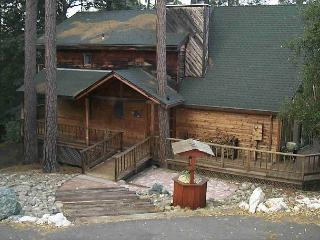 Our Bear Haven-Dog Friendly-Large Chalet style home on large lot. - Groveland vacation rentals