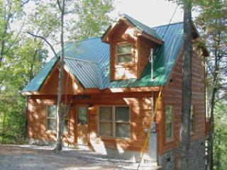 Lumber Jack Lodge - Image 1 - Gatlinburg - rentals