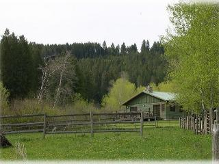 Brackett Creek Cabin - Montana vacation rentals