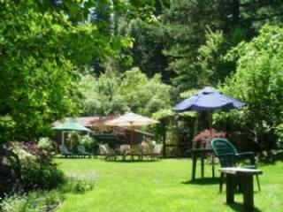 Heaven at the Redwoods - Healdsburg vacation rentals