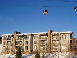 Norwegian Log: 3BR, 3BA, Ski-in, Ski-out. Views. - Steamboat Springs vacation rentals