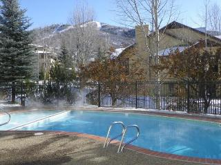 The Terraces-S32. Totally Renovated. Pool, Shuttle - Steamboat Springs vacation rentals