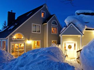 Thunderhead Chalet - ultimate ski-in/ski-out home! - Steamboat Springs vacation rentals