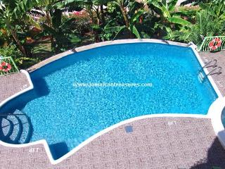 Dream Castle Villa, Montego Bay - Sandy Bay vacation rentals