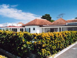 Pineapple Villa - Jamaica vacation rentals