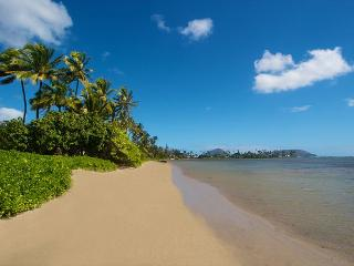 A7.The Banyan Tree - Honolulu - Haleiwa vacation rentals