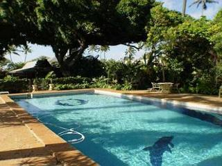 B1. Garden Cottage - Honolulu - Oahu vacation rentals