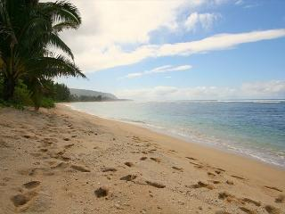 D0. North Shore 33 - - Haleiwa vacation rentals