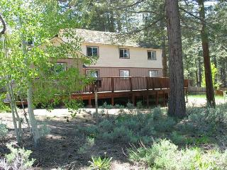 Relaxing vacation home with arcade, private hot tub, and views of the meadow! - South Lake Tahoe vacation rentals