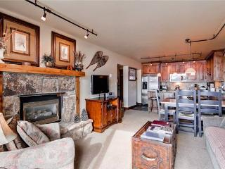 Bronze Tree B406 - Steamboat Springs vacation rentals