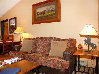 Bronze Tree B604 - Steamboat Springs vacation rentals