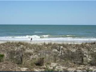 Shipyard A14 - Oceanfront - Image 1 - Pawleys Island - rentals