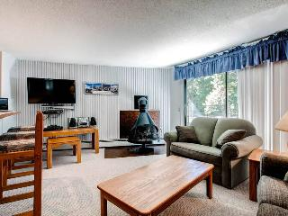 Gold Camp A47 - Breckenridge vacation rentals