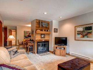 Ski Hill 29 - Breckenridge vacation rentals