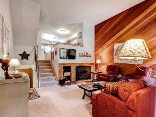Winter Point 22 - Breckenridge vacation rentals