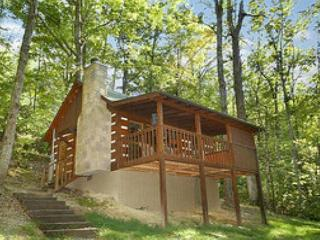 Very Romantic and Private Mountain Cabin for Couples Only!  BEARHGS - Sevierville vacation rentals