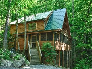 Total Relaxation and Privacy!  Gorgeous Mountain Cabin on a Stream!  STRM - Sevierville vacation rentals